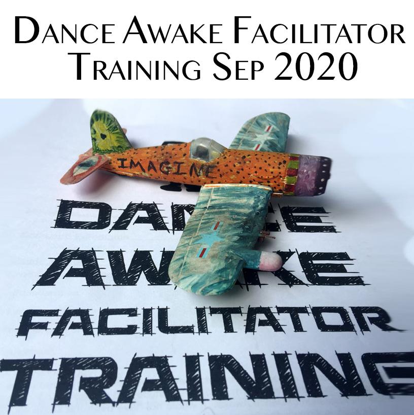 Dance Awake Facilitator Training